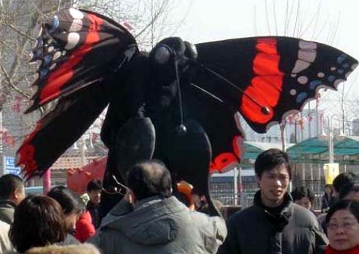 Giant Butterflies on stilts by Neighbourhood Watch Stilts International