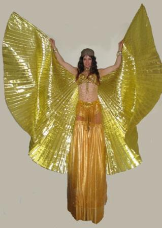 Golden Winged Dancer on Stilts by Rachel H