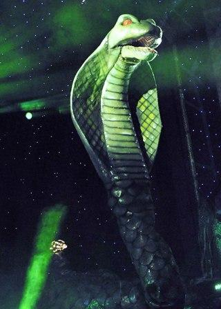 Snakey Cobra by Twins FX Dorset