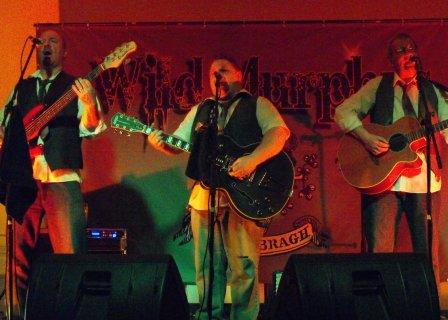 The Wild Murphy's Irish Band based in Co Durham